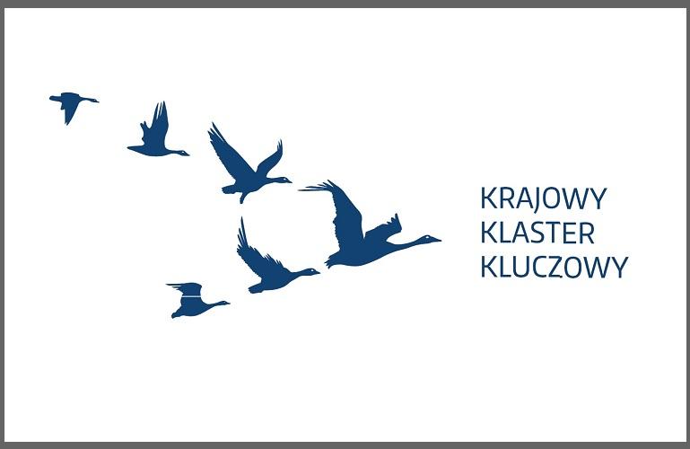 Umiędzynarodowienie Krajowych Klastrów Kluczowych (Poddziałanie 2.3.3. PO IR)